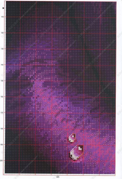 Gallery.ru / Фото #7 - фиолетовая роза - irinakiz