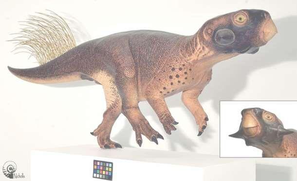 """¿Cómo eran los dinosaurios? Aunque la visión más común puede ser la de películas como """"Jurassic Park"""", quizá la realidad era muy distinta.</p>"""