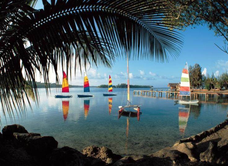 Vanuatu. El Animista.