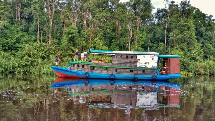 Best way to explore Borneo Rainforest an it's wildlife is by boat or klotok.