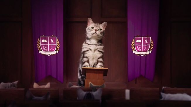 Whiskas Takes You to Kitten Kollege in This Adorable Online Campaign