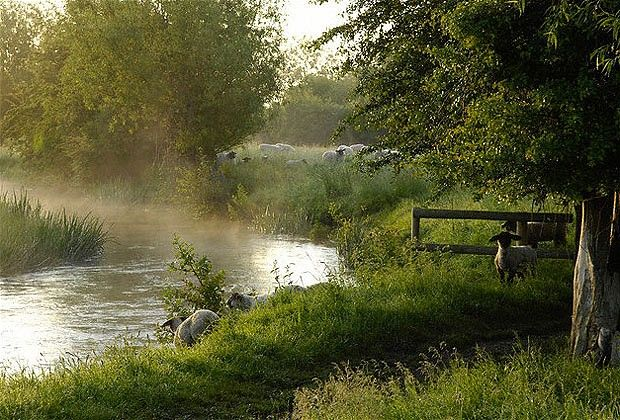 River Windrush Near Burford, Oxfordshire, the Cotswolds, England, United Kingdom, Europe By: Rob Cousins