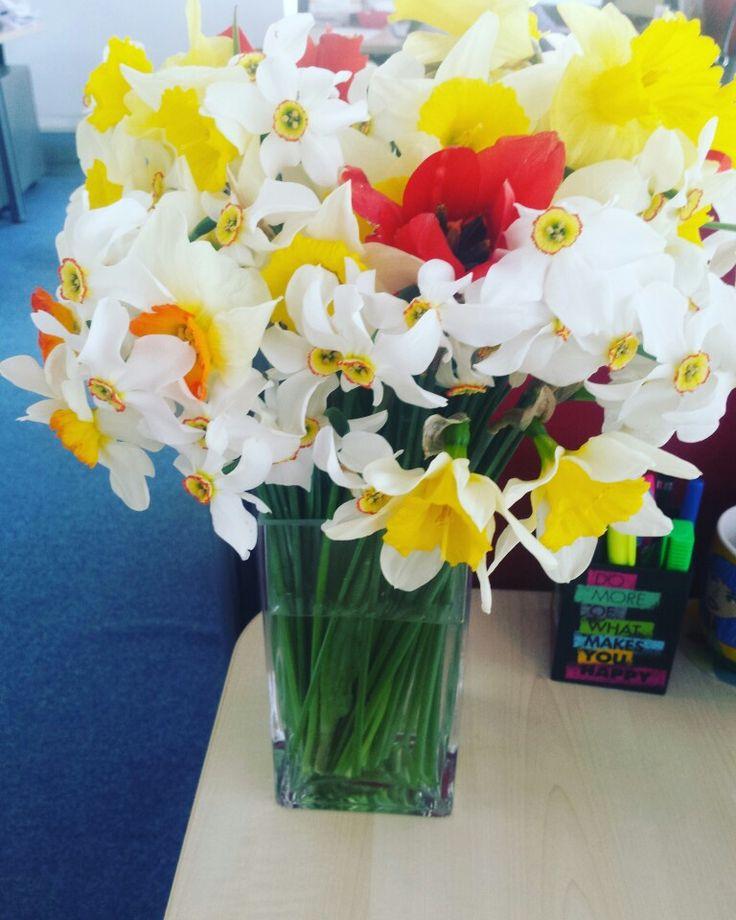 Flowers April 2016