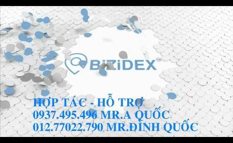 BiZiDEx On the world