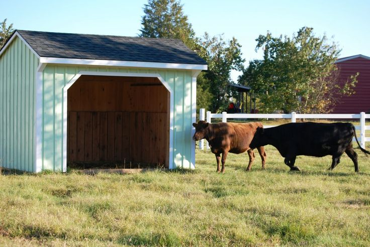 1000 Images About Horse Lean To On Pinterest Stables