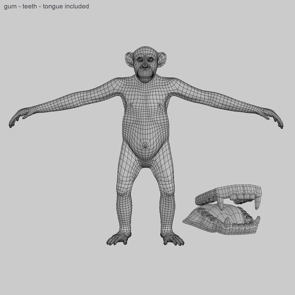 Chimp (ANIMATED) (FUR) (ID: 712006)