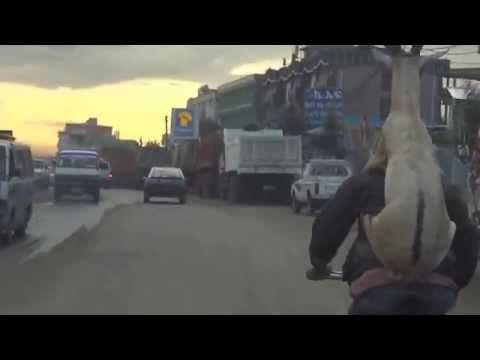 【本日の絶景動画】ドナドナド〜ナ〜ド〜ナ〜! ヤギをおんぶしながら自転車をシャカリキにこぐ男性 | Pouch[ポーチ]