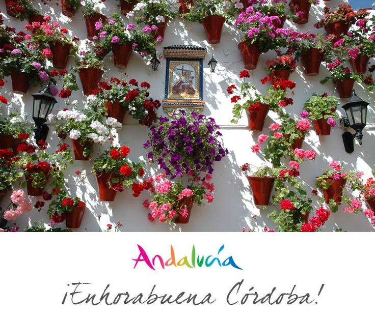 """La Unesco ha declarado la Fiesta de los Patios Patrimonio Inmaterial de la Humanidad... ¡enhorabuena Córdoba! / The UNESCO has declared the Festivity of """"los Patios"""" as Intangible Heritage of Humanity... congratulations Córdoba!"""