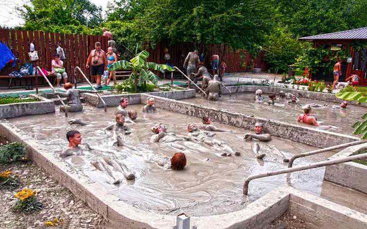 Джиппинг в Геленджике является одной из самых популярных экскурсий города. Джиппинг в оздоровительный парк. Цена Джиппинга в Геленджике. Отзывы о джиппинге