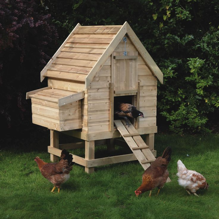 1000+ Ideas About Small Chicken Coops On Pinterest