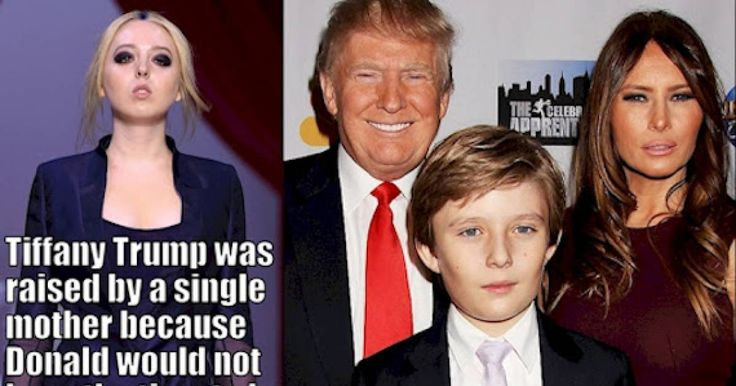 Truly Weird Facts About Trumps Kids 7 Truly Weird  Facts About Trumps Kids http://ift.tt/2fO82ts There's a chance that they'll become America's first family so shouldn't we know a little more about the Trump kids?
