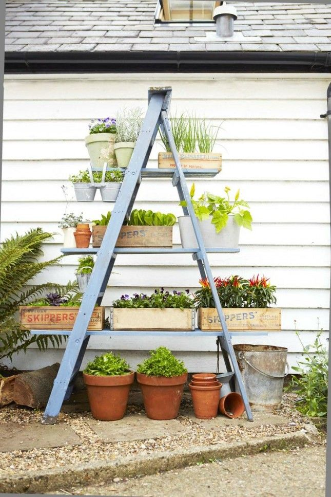 Upgrade a ladder into a tiered planter with this tutorial.