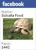 Sulcata Food: Planting Instructions