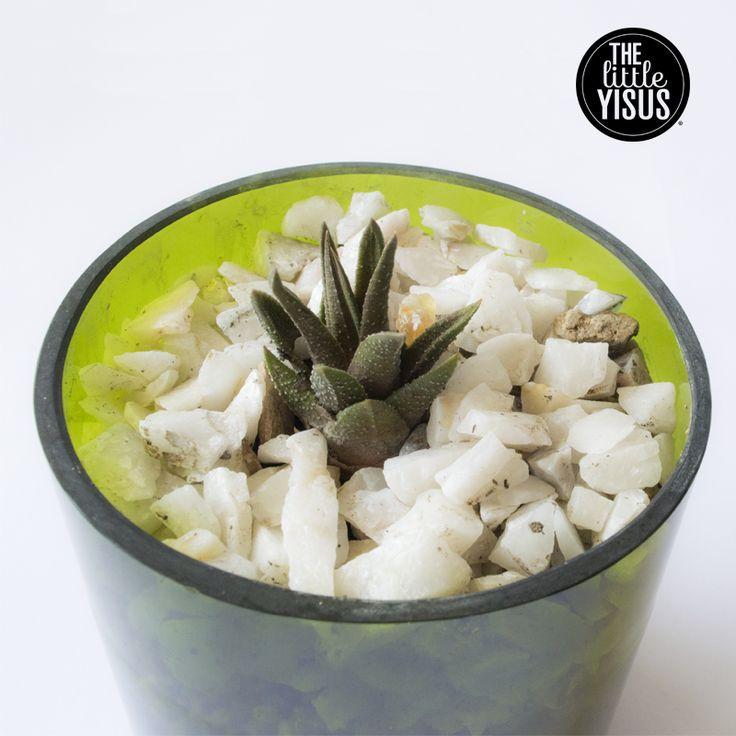 Macetas hechas con botellas de vidrio cortadas!  the little yisus