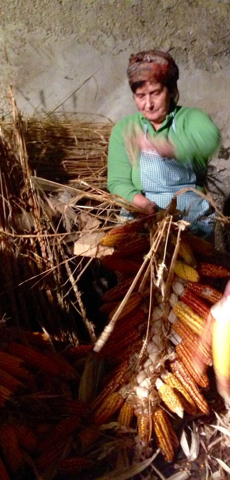 El Esfoyón y el Amagosto fiesta tradicional en Navelgas. #Calulon #asturias