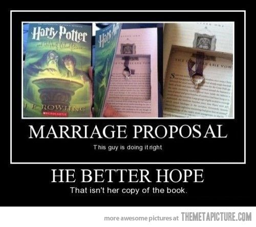 Harry Potter Proposal.