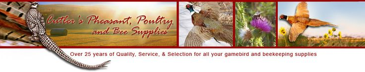 Cutler Pheasant and Poultry Supply   great prices