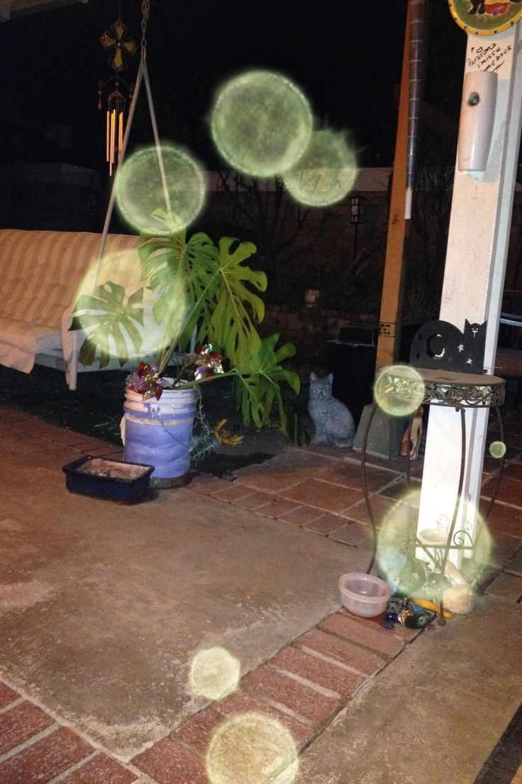 """the orbs my camera caught in my backyard i wonder if they are the same i caught before or different travelers ?""  Via tina marie c."