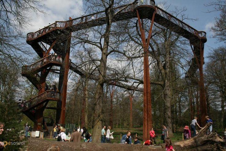 Тропа Кью Гарденс – #Великобритания #Англия #Ричмонд_апон_Темс (#GB_ENG) В Лондонском Кью Гарденс есть возможность прогуляться не только под деревьями, но и с ними наравне! http://ru.esosedi.org/GB/ENG/1000197372/tropa_kyu_gardens/