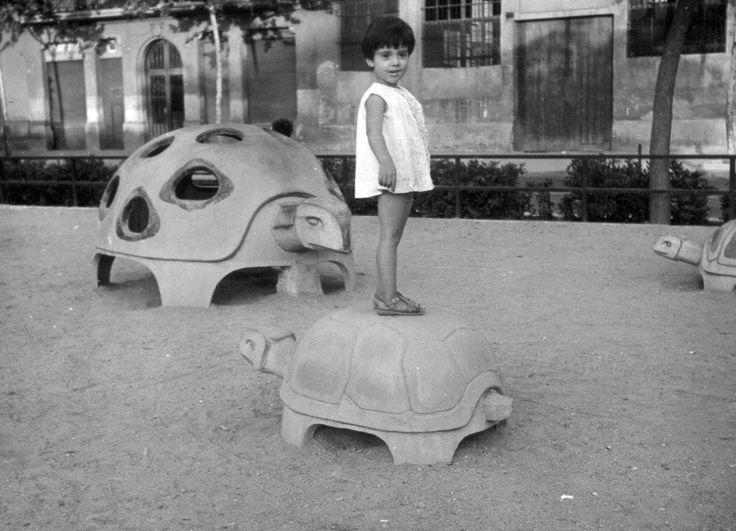 Les tortugues de quan erem petits. Jo recordo les de Montjuic.