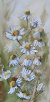 akwarelowe kwiaty by modliszqa on deviantART