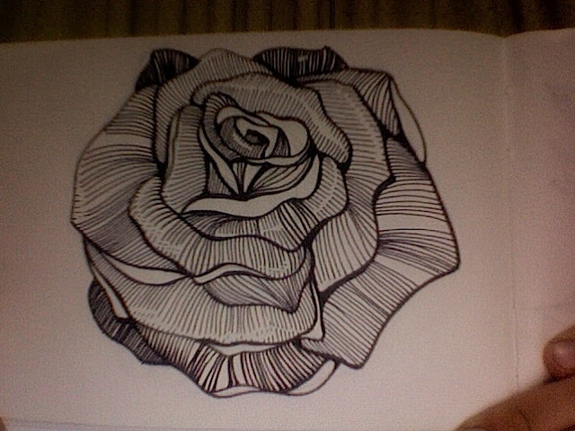 19 best amazing tattoo design images on pinterest for Amazing drawings of roses