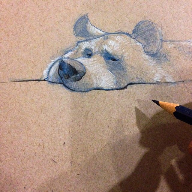 A Bear sketch ✏️ at the SF Zoo. | Use Instagram online! Websta is the Best Instagram Web Viewer! ★ Find more at http://www.pinterest.com/competing/