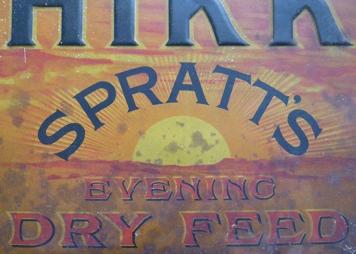 Rare Vintage Spratts Chikko Tin Advertising Sign Enamel Interest Antique | eBay