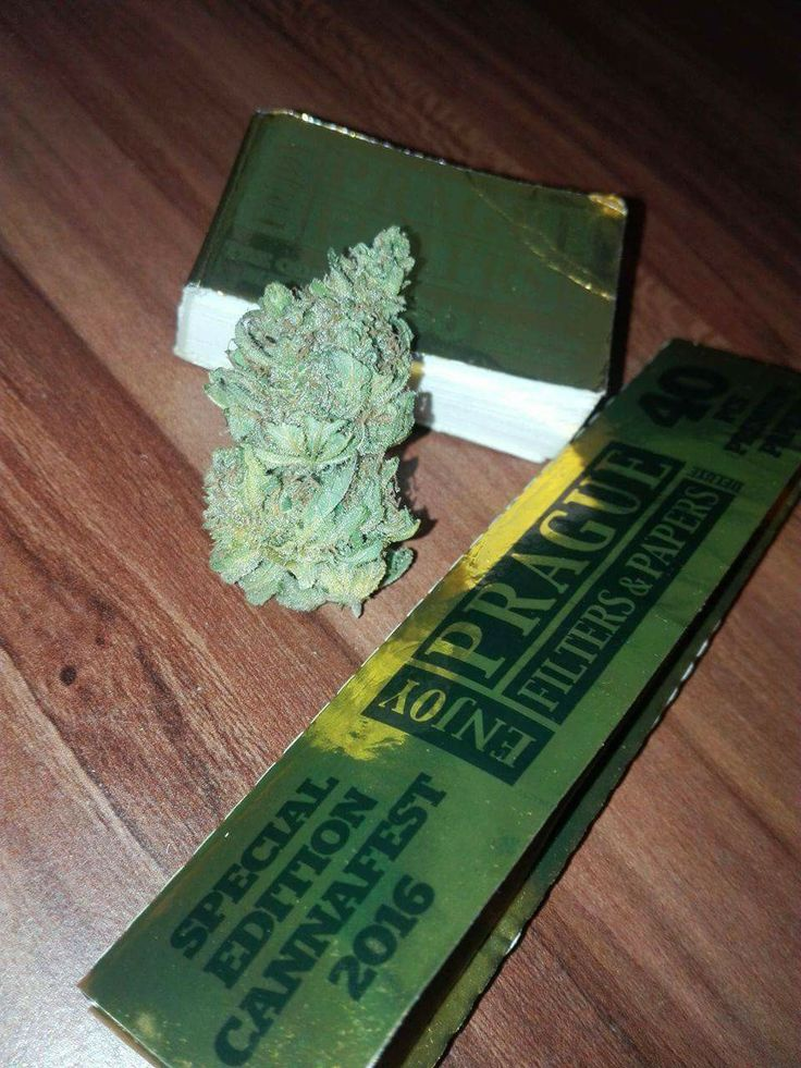 #praguepapers #hashberry #weed #420
