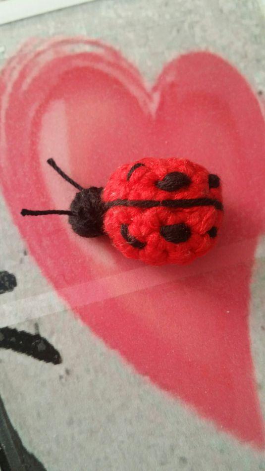 Coccinella Amigurumi realizzata all'uncinetto! Potete trovare nel mio blog lo SCHEMA GRATUITO!