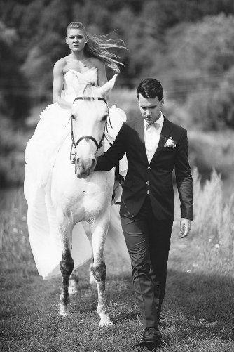 любовь и ... лошади)