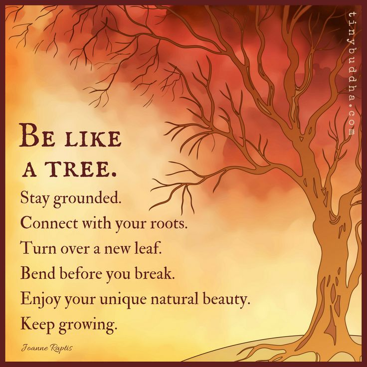 Be like a tree. Stay grounded. Connect with your roots. Turn over a new leaf. Bend before you break. Enjoy your unique natural beauty. Keep growing.