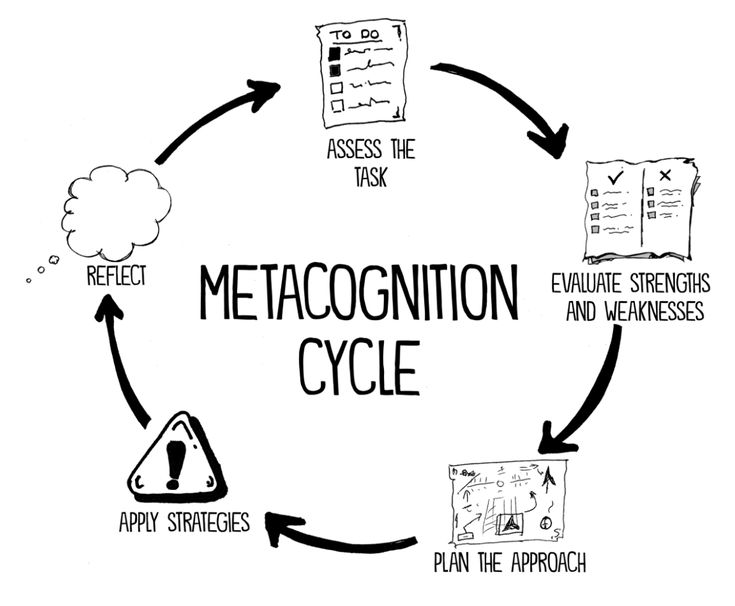 Metacognition Cycle