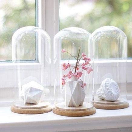 Glazen stolp | Inrichting-huis.com