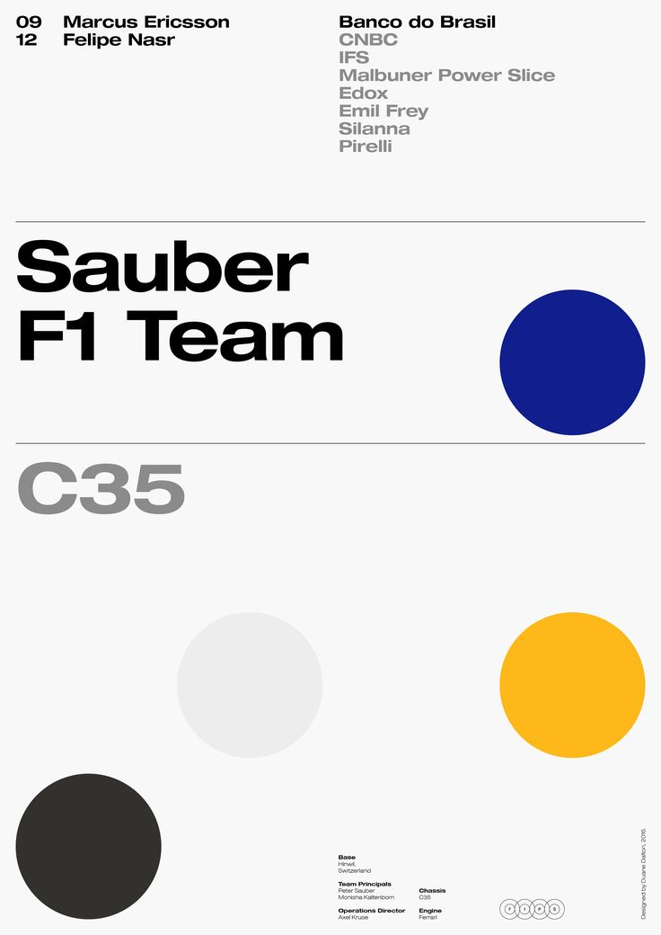 Sauber F1 Team – Formula One Poster Series 2016 by Duane Dalton