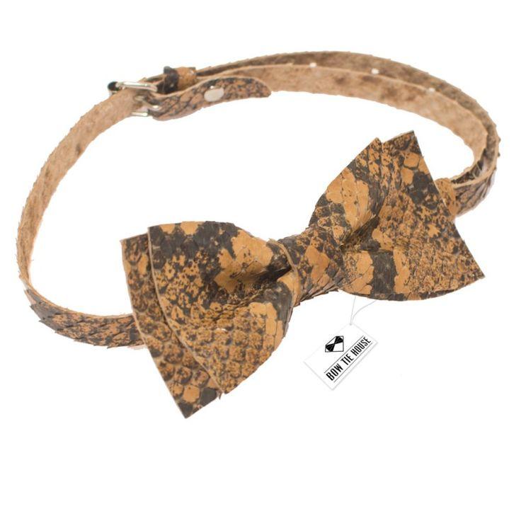 Кожаная бабочка из Питона