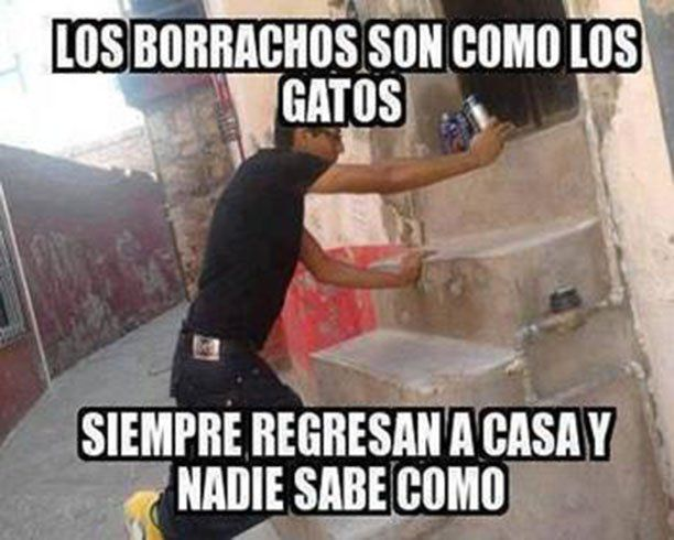 Memes De Borrachos 10 Borrachos Chistosos Borrachos Chistes Borrachos