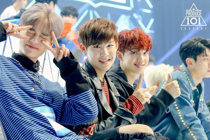 Produce 101 Season 2 - Brand New Music Trainees Lee Daehwi (이대휘), Park Woojin (박우진), Im Youngmin (임영민)
