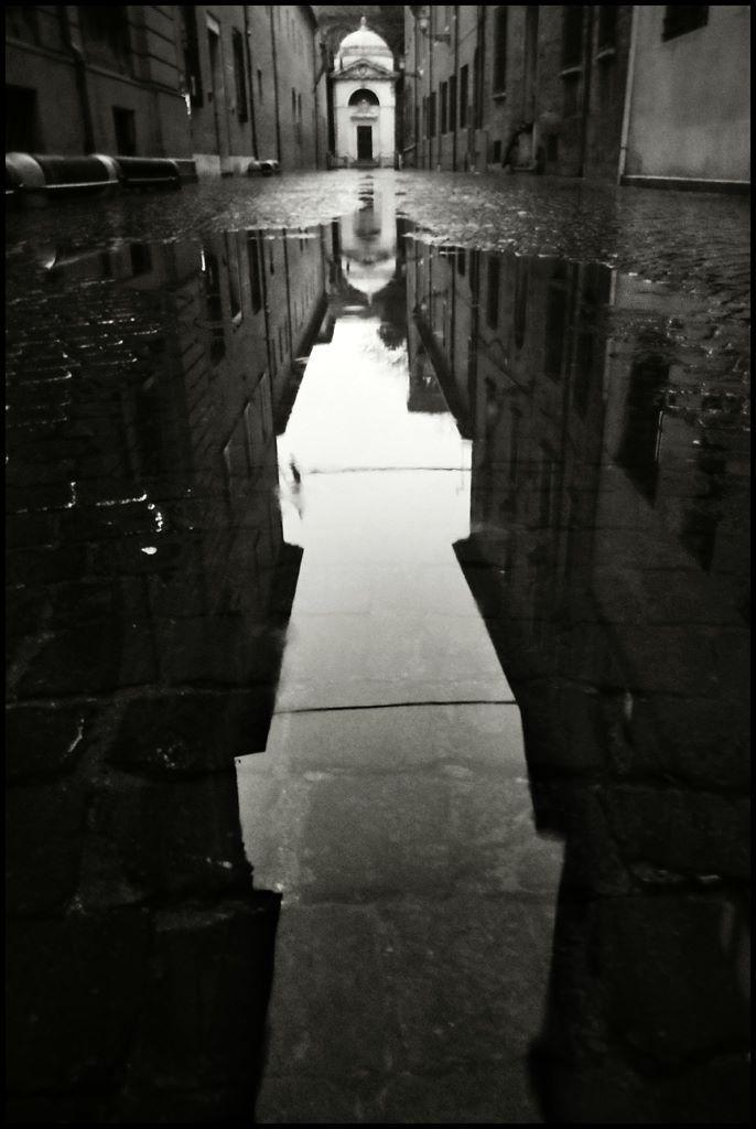 Maurizio Nicosia  2014, 2 febbraio   Ravenna, Tomba di Dante