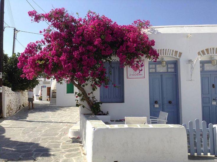 Lovely Cycladic atmosphere at Folegandros island (Φολέγανδρος).