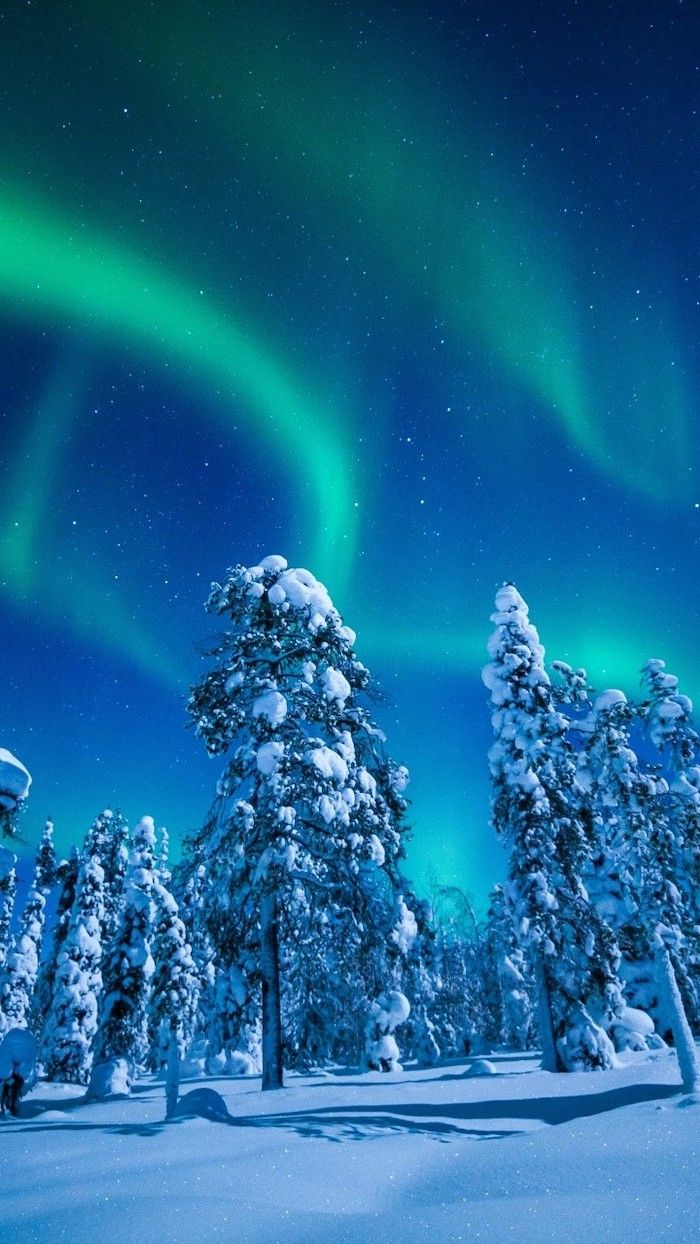 1001 Ideas For Winter Wallpapers And Backgrounds For Your