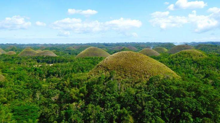 #Philippinen: Schokoladenhügel sind zwischen 30 und 50 Meter hoch.