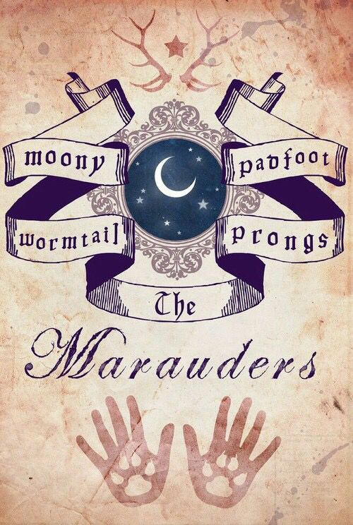 1000+ images about The Marauder era on Pinterest | Remus ...