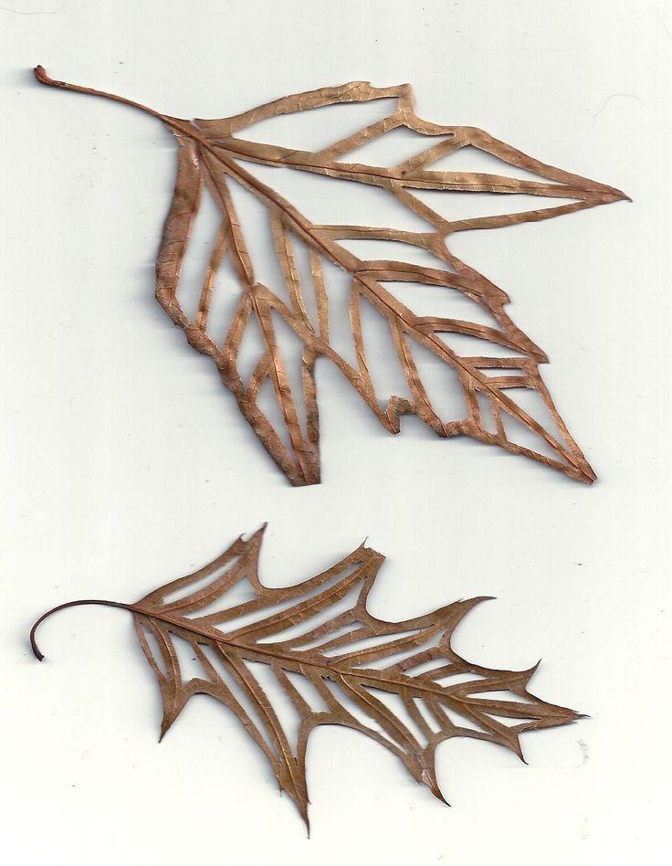 Inspired by: Leaves – Inspirada por: Hojas » Jo's Loft