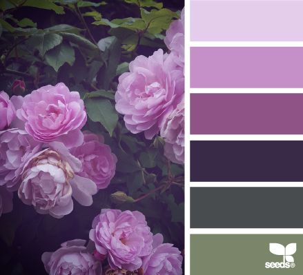 flora palette | design seeds | Bloglovin