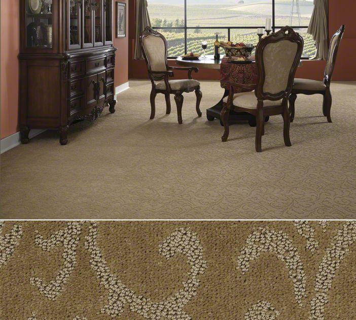 Shaw Anso Nylon Carpet In A Distinctive Pattern