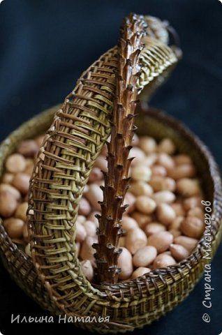 Поделка изделие Плетение Вазочка - корзинка для орешков Материал природный фото 6