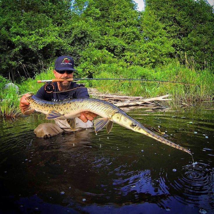 28 best gar images on pinterest fishing fly fishing and for Gar fishing lures