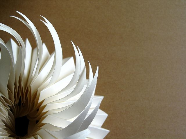 spine book   Flickr - Photo Sharing!