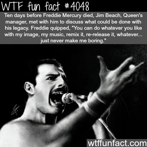 And he still isn't boring.  Freddie Mercury - WTF fun facts